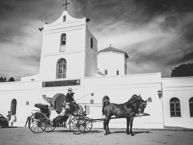 La boda de Andrés y Pepita en Conil De La Frontera, Cádiz 44