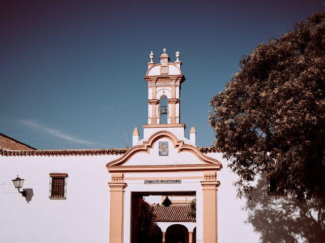 La boda de Daniel y Ana en Alcala De Guadaira, Sevilla 29