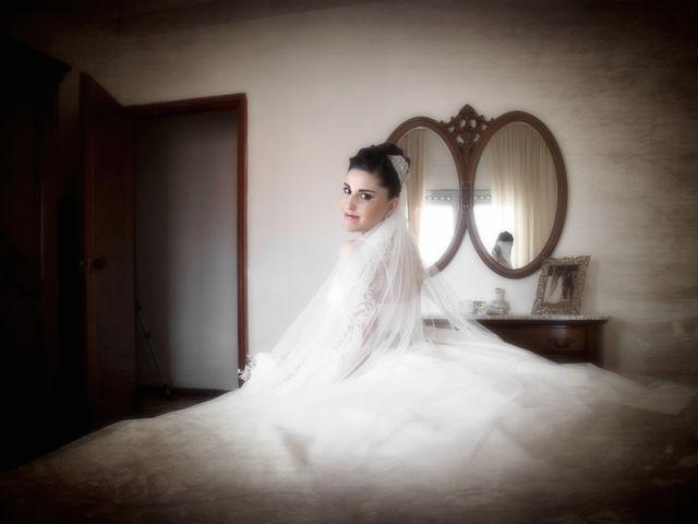 La boda de Lourdes y Daniel en Toledo, Toledo 13