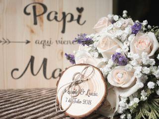 La boda de Lucía y Manolo 3