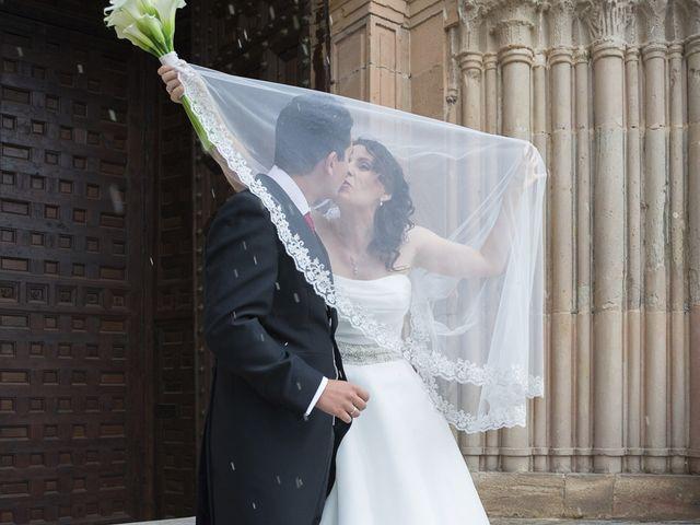 La boda de Alfonso y Isabel en Siguenza, Guadalajara 14