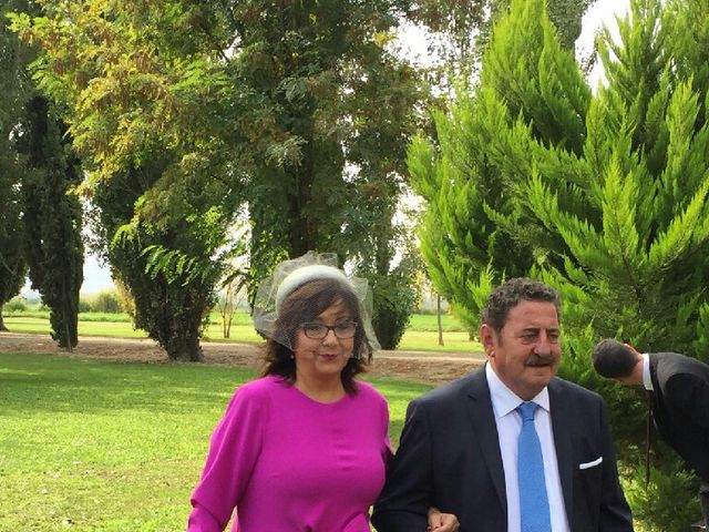 La boda de Roberto y Sara en Zaragoza, Zaragoza 66
