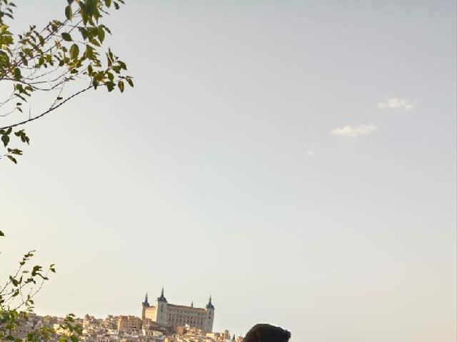 La boda de Isabel y Daniel en Toledo, Toledo 6