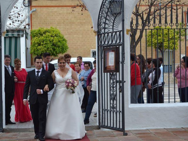 La boda de Antonio y Mª Angeles en Montalban De Cordoba, Córdoba 2
