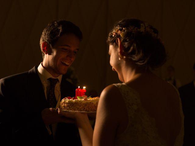 La boda de Luis y Conchi en Jaén, Jaén 33