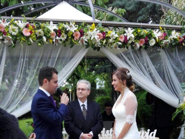 La boda de David  y Kristel  en Collado Villalba, Madrid 5