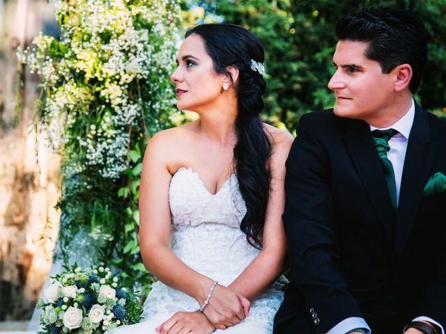 La boda de Juanfe y Sara en Puebla De Sancho Perez, Badajoz 19