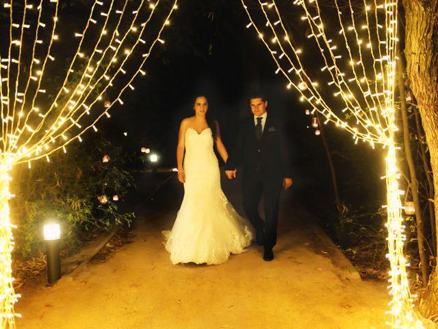 La boda de Juanfe y Sara en Puebla De Sancho Perez, Badajoz 29