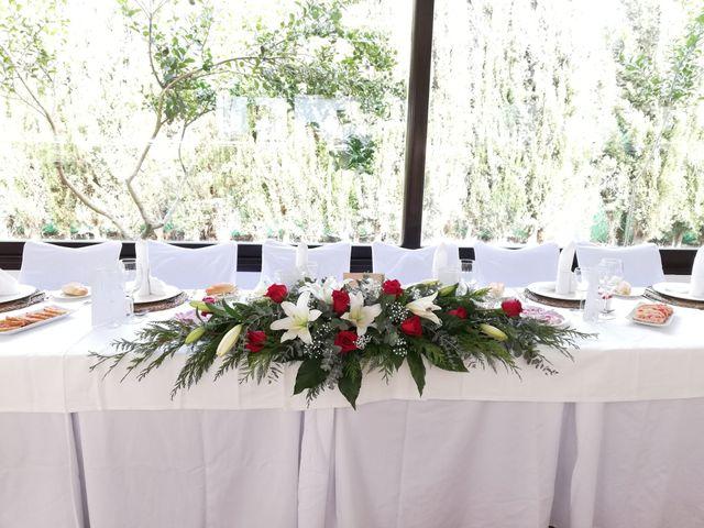 La boda de Daniel y Cristi  en Adra, Almería 8
