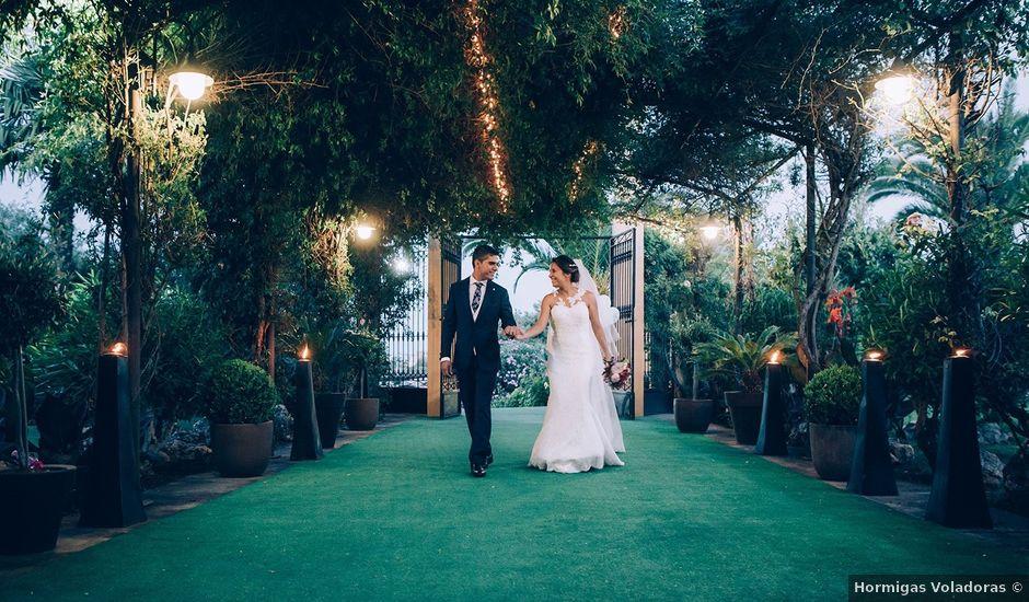 La boda de Antonio y Marta en Badajoz, Badajoz