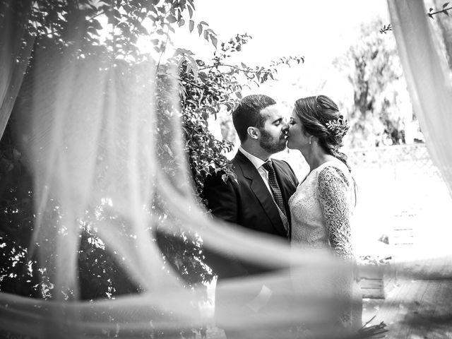 La boda de Aaron y Loida en Palomares Del Rio, Sevilla 81