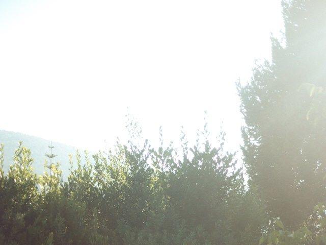 La boda de Alexis y María en Vigo, Pontevedra 17