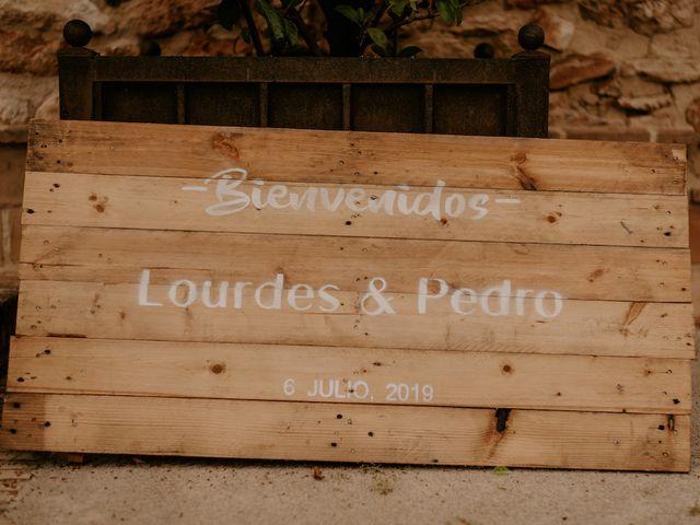 La boda de Pedro y Lourdes en Albacete, Albacete 6