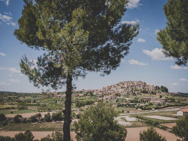 La boda de Rob y Elena en Horta De Sant Joan, Tarragona 35