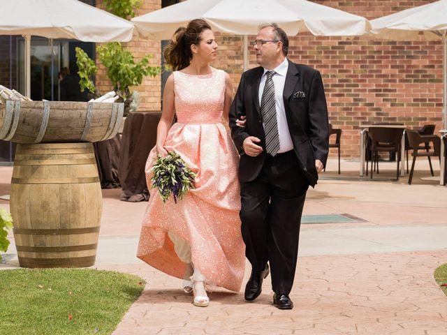 La boda de David y Andrea en Paganos, Álava 19