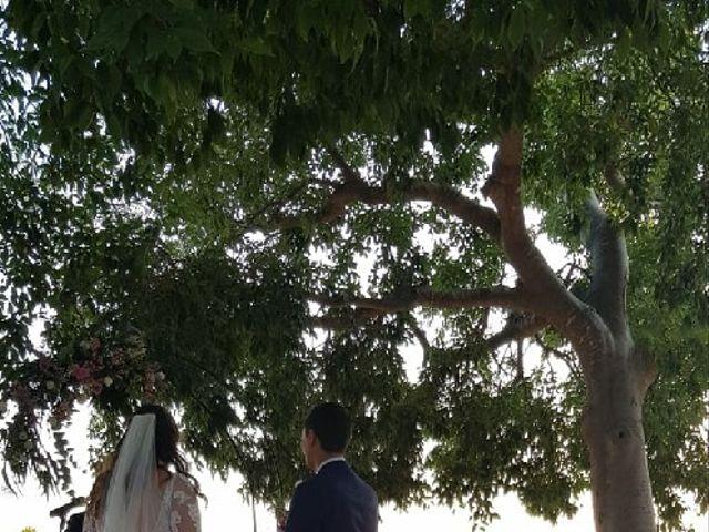 La boda de Toni y Marian en Bunyola, Islas Baleares 18