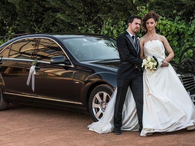 La boda de David y Diana en Laguardia, Álava 20