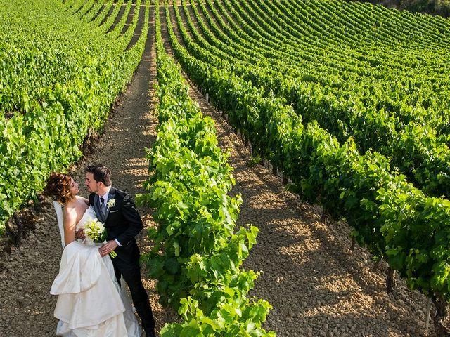 La boda de David y Diana en Laguardia, Álava 23