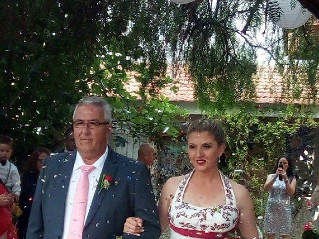 La boda de Pedro y Carmen en Petrer, Alicante 2