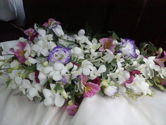 La boda de César y Asun en Viveiro (Casco Urbano), Lugo 1