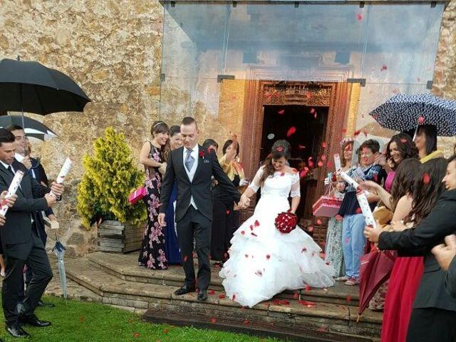 La boda de Sergio y Patricia en Posada De Llanera, Asturias 1