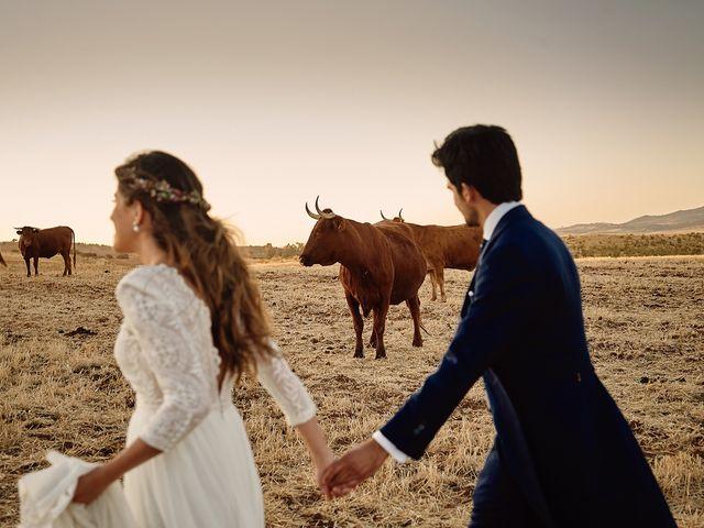 La boda de Juan Antonio y Carmen en Villafranca De Los Barros, Badajoz 51