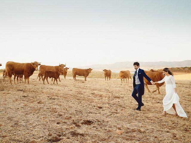 La boda de Juan Antonio y Carmen en Villafranca De Los Barros, Badajoz 2