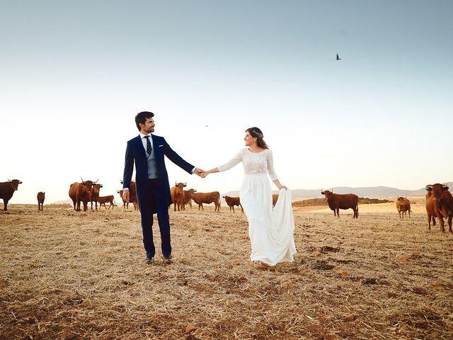 La boda de Juan Antonio y Carmen en Villafranca De Los Barros, Badajoz 52