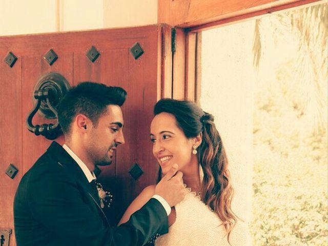 La boda de Abel y Lidia en Villena, Alicante 66