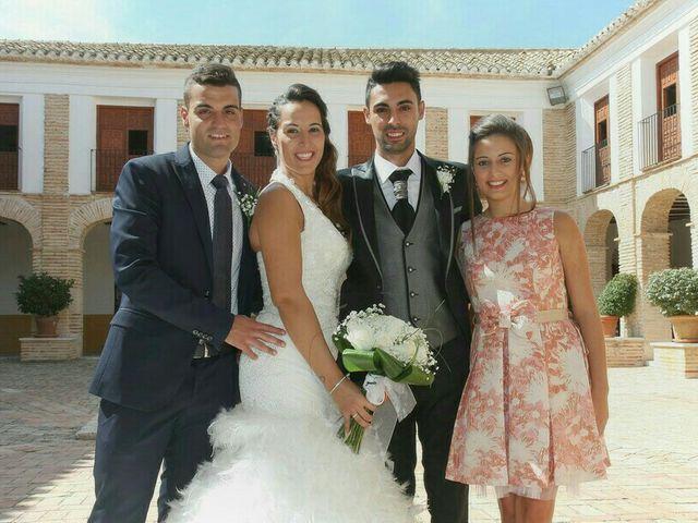 La boda de Abel y Lidia en Villena, Alicante 71