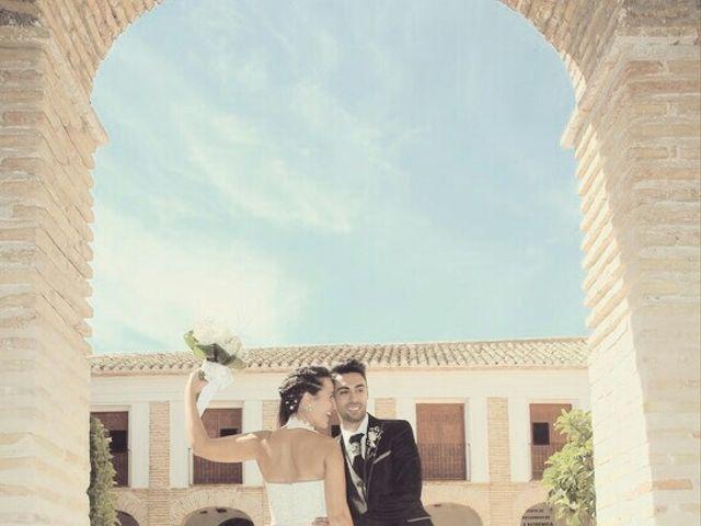 La boda de Abel y Lidia en Villena, Alicante 81
