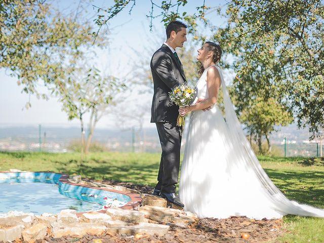 La boda de Borja y Nuria en Santa Marina (Siero), Asturias 22