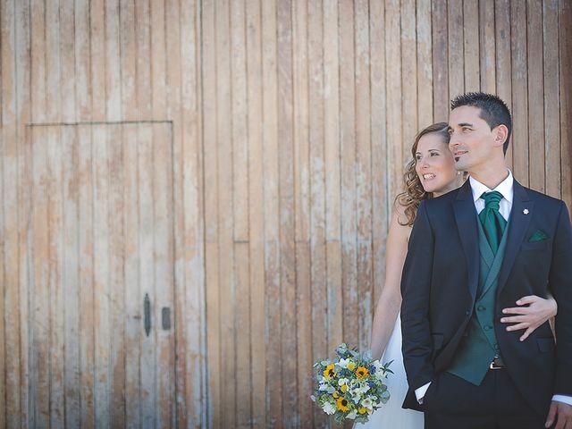 La boda de Borja y Nuria en Santa Marina (Siero), Asturias 26
