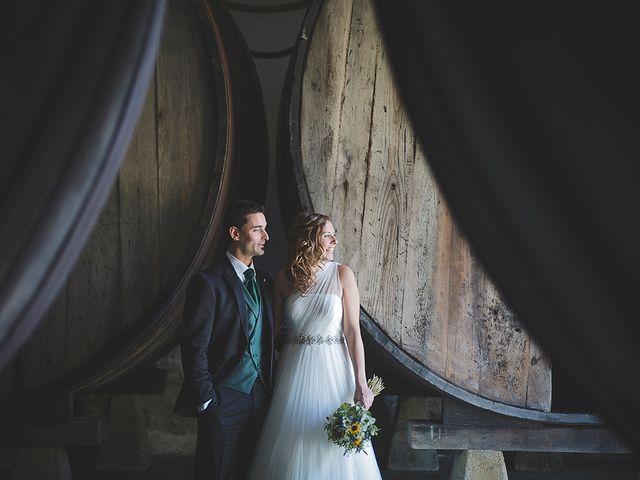 La boda de Borja y Nuria en Santa Marina (Siero), Asturias 28