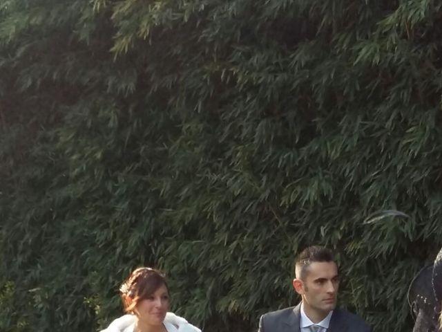 La boda de David y Cristina en Sant Fost De Campsentelles, Barcelona 10
