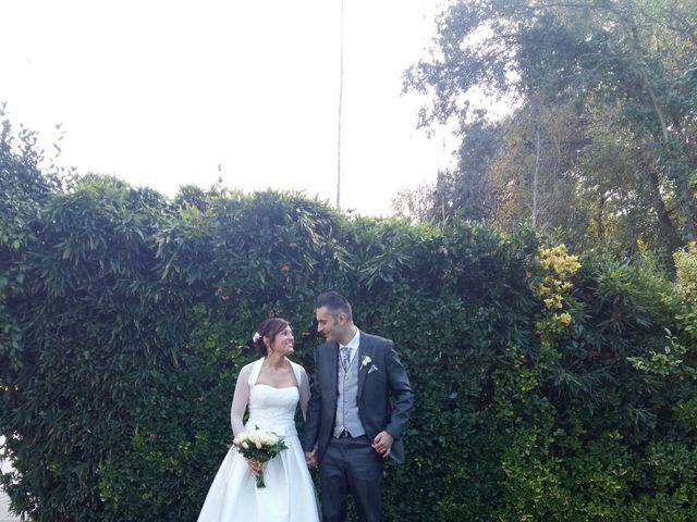 La boda de David y Cristina en Sant Fost De Campsentelles, Barcelona 12