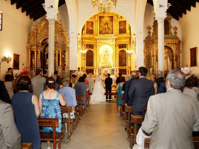 La boda de Javier y Ana Maria en Brenes, Sevilla 15