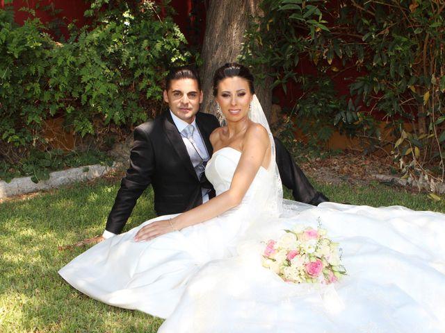 La boda de Javier y Ana Maria en Brenes, Sevilla 20