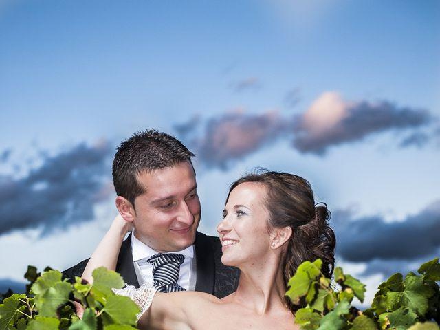 La boda de Santiago y Ester en Albelda De Iregua, La Rioja 41