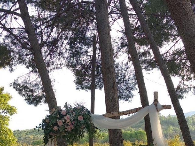 La boda de Antonio  y Jenny  en L' Albiol, Tarragona 5