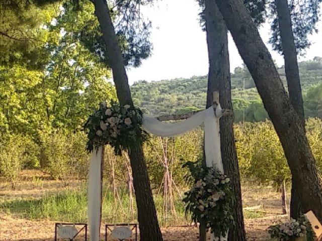 La boda de Antonio  y Jenny  en L' Albiol, Tarragona 7