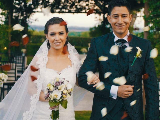La boda de Tania y Jose Luis en Aranjuez, Madrid 6
