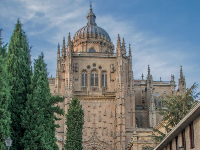 La boda de Nacho y Sofia en Salamanca, Salamanca 23