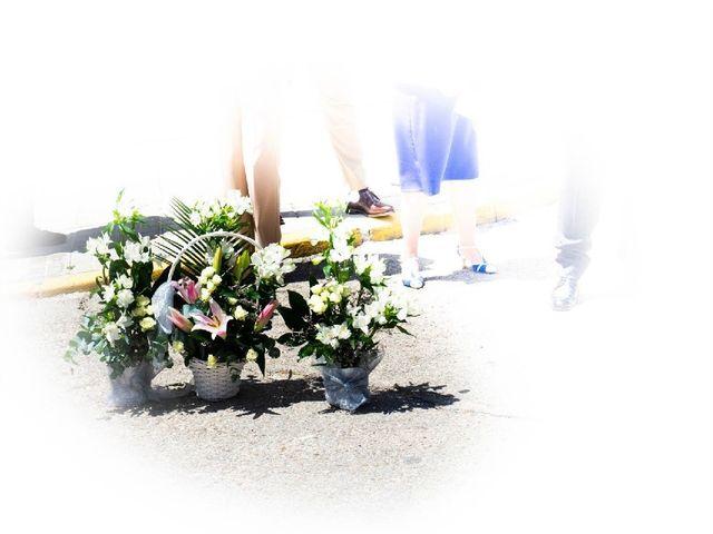 La boda de Fernando  y Maribel  en Ribatejada, Madrid 5