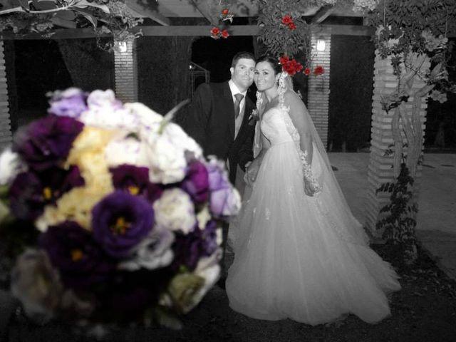 La boda de Carolina y Indalecio en Granada, Granada 2