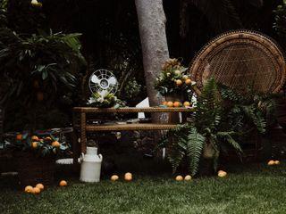 La boda de Helena y Jair 2