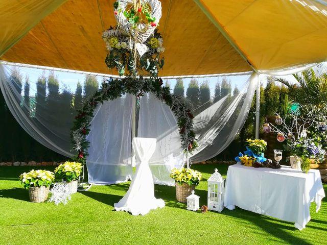 La boda de David y Ana en Villarrobledo, Albacete 1