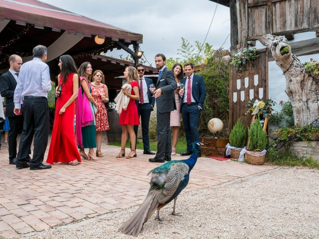 La boda de Unai y Garazi en Loiu, Vizcaya 25