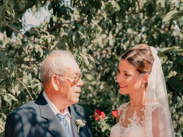 La boda de Pedro y Almudena en Membrilla, Ciudad Real 37
