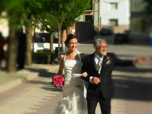 La boda de Sergio y Pilar en Miguel Esteban, Toledo 7